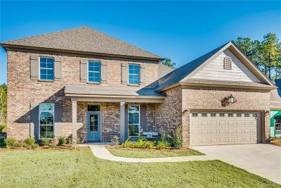 Montgomery Single Family Home For Sale: 8507 Sunrise Loop
