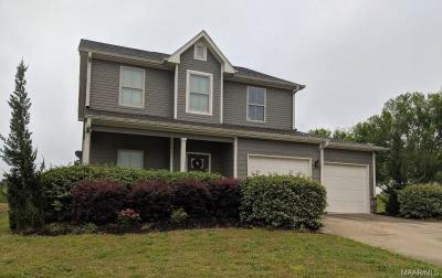 Montgomery Single Family Home For Sale: 4206 Abbotts Walk
