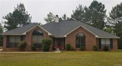 Rural Single Family Home For Sale: 1175 Old Georgia Plank Road