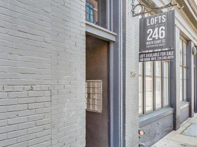 Montgomery Condo/Townhouse For Sale: 246 N Court Street #H