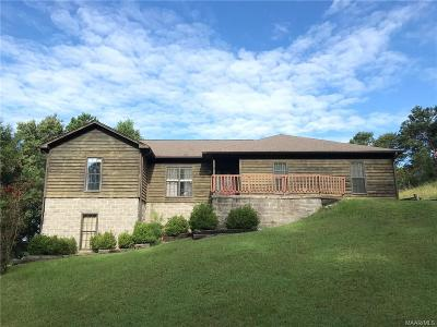 Wetumpka Single Family Home For Sale: 95 Sky View Drive