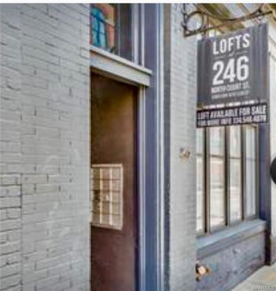 Montgomery Condo/Townhouse For Sale: 246 N Court Street #K