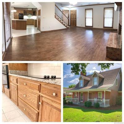 Sturbridge Single Family Home For Sale: 8668 Sturbridge Drive