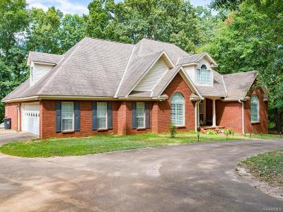 Blue Ridge Estates Single Family Home For Sale: 484 Haggerty Road