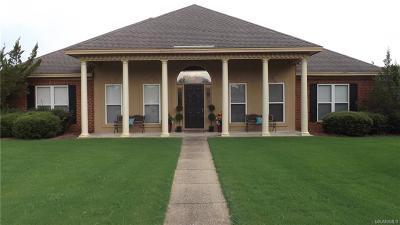 Sturbridge Single Family Home For Sale: 8690 Wible Run