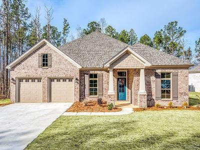 Montgomery Single Family Home For Sale: 8520 Sunrise Loop