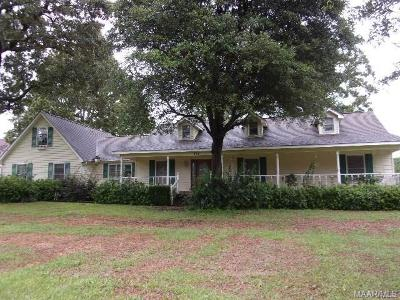 Single Family Home For Sale: 355 Roney Road