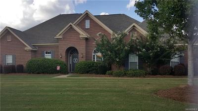 Sturbridge Single Family Home For Sale: 8218 Chadburn Crossing