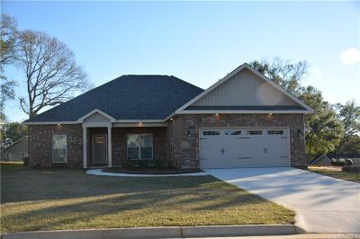 Enterprise Single Family Home For Sale: 660 Valley Stream Drive