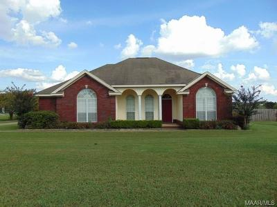 Prattville Single Family Home For Sale: 2480 County Road 59
