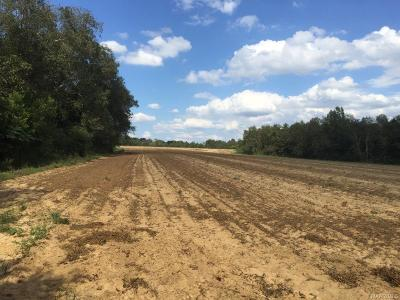 Residential Lots & Land For Sale: 557 Acres County Road 215