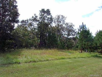 Residential Lots & Land For Sale: 738 Ethan Lane