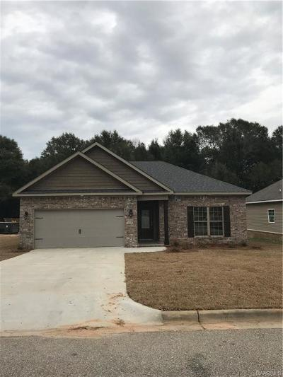 Enterprise Single Family Home For Sale: 500 Valley Stream Drive