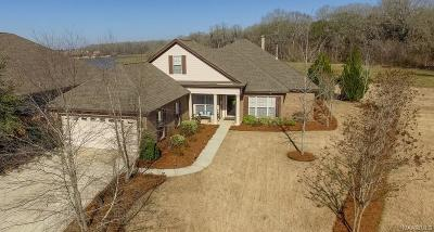 Montgomery Single Family Home For Sale: 9184 Autumnbrooke Way