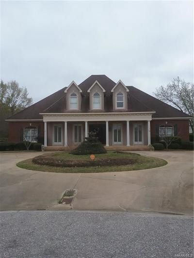 Montgomery Single Family Home For Sale: 9462 Alysbury Place
