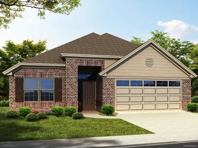 Montgomery Single Family Home For Sale: 1020 Russborough Trace