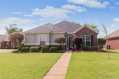 Montgomery Single Family Home For Sale: 9325 Bristlecone Drive
