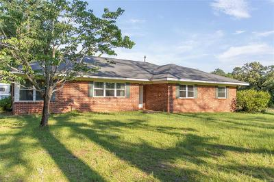 Prattville Single Family Home For Sale: 244 N Northington Street