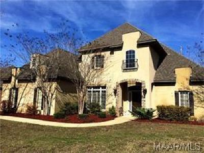 Montgomery Single Family Home For Sale: 1213 Chadwick Lane