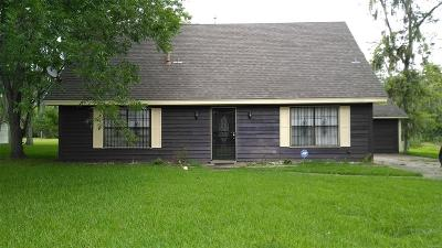 Montgomery Single Family Home For Sale: 3387 E Brookwood Drive