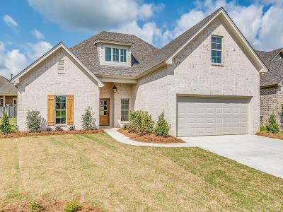 Montgomery Single Family Home For Sale: 8932 Thompson Ridge Loop