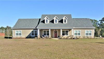 Enterprise Single Family Home For Sale: 289 County Road 561