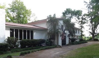 Enterprise Single Family Home For Sale: 6544 Highway 27