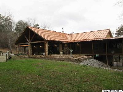 Fort Payne Single Family Home For Sale: 3809 County Road 275