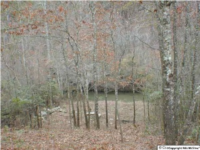 Residential Lots & Land For Sale: Road 9002 #20-A
