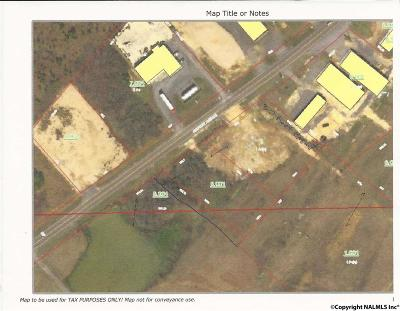 Commercial For Sale: Airport Road