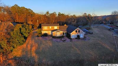 Guntersville Single Family Home For Sale: 1709 Winston Street