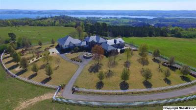 Guntersville Single Family Home For Sale: 629 Martin Lane