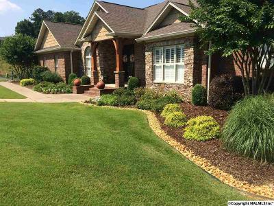 Marshall County Single Family Home For Sale: 100 Spy Glass Cove