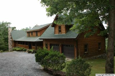 Chattooga County, Walker, Dade Single Family Home For Sale: 33533 Highway 157
