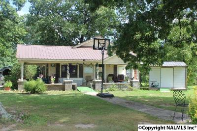 Flat Rock, Fort Payne, Henagar, Ider, Mentone, Pisgah, Rainsville, Sylvania, Valley Head Single Family Home For Sale: 1102 McCurdy Avenue