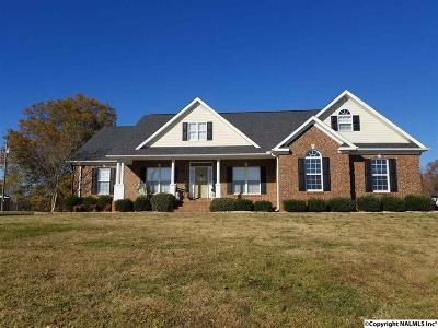 Hartselle Single Family Home For Sale: 689 Rock Springs Road