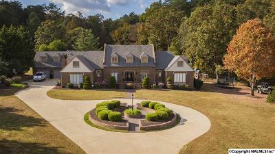 Fort Payne Single Family Home For Sale: 4706 Greenhill Blvd