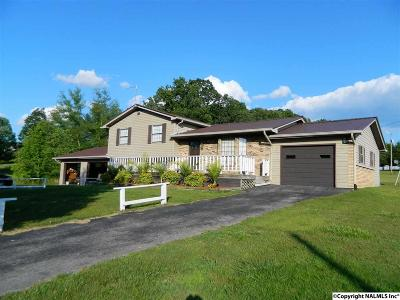 Dekalb County Single Family Home For Sale: 14173 State Highway 75