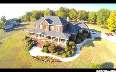 Madison Single Family Home For Sale: 27425 Lands End Drive