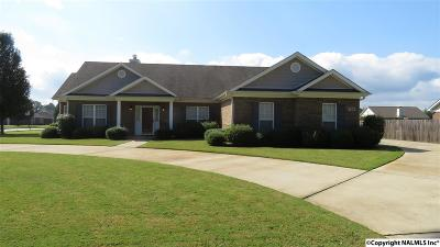 Hazel Green Single Family Home For Sale: 708 Elkwood Section Road