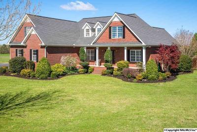 Dekalb County Single Family Home For Sale: 80 Crabapple Lane