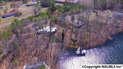 Fort Payne Residential Lots & Land For Sale: 11746 County Road 176