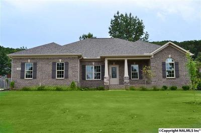 Priceville Single Family Home For Sale: 63 Emory Drive