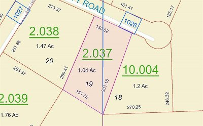 Valley Head Residential Lots & Land For Sale: 19 County Road 1028