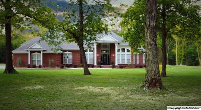 Hartselle Single Family Home For Sale: 1900 Indian Hills Road