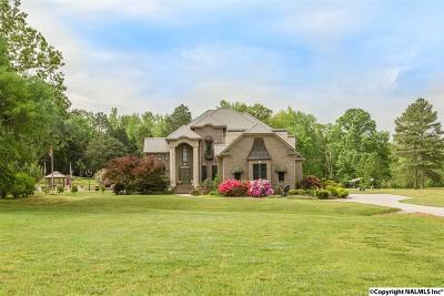 Athens Single Family Home For Sale: 9078 Snake Road