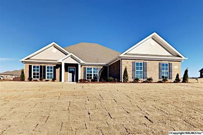 Meridianville Single Family Home For Sale: 244 Cozy Creek Road