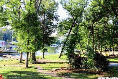 Guntersville Single Family Home For Sale: 306 Morrow Drive
