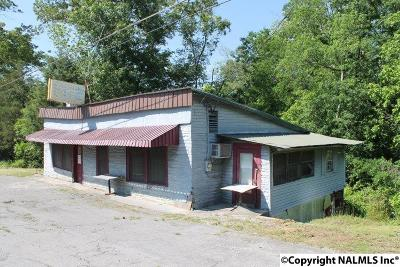 Commercial For Sale: 1066 County Road 835