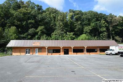 Guntersville Commercial For Sale: 1615 Henry Street